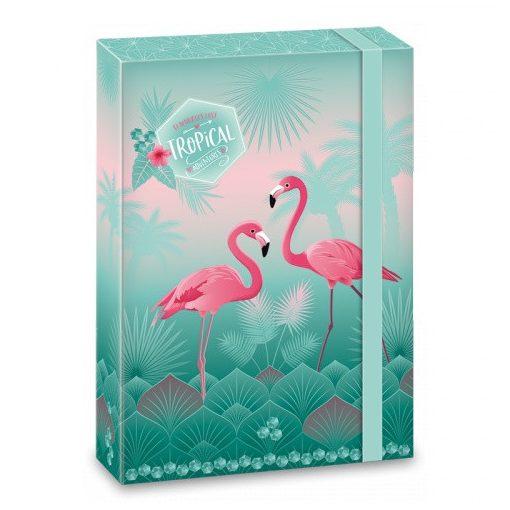ARS UNA füzetbox  A/4 Flamingo