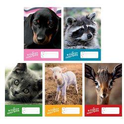 Füzet A/5 Cute Animals PD 27-32 kockás, négyzethálós